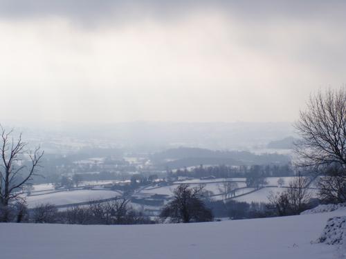 misty winter scenery
